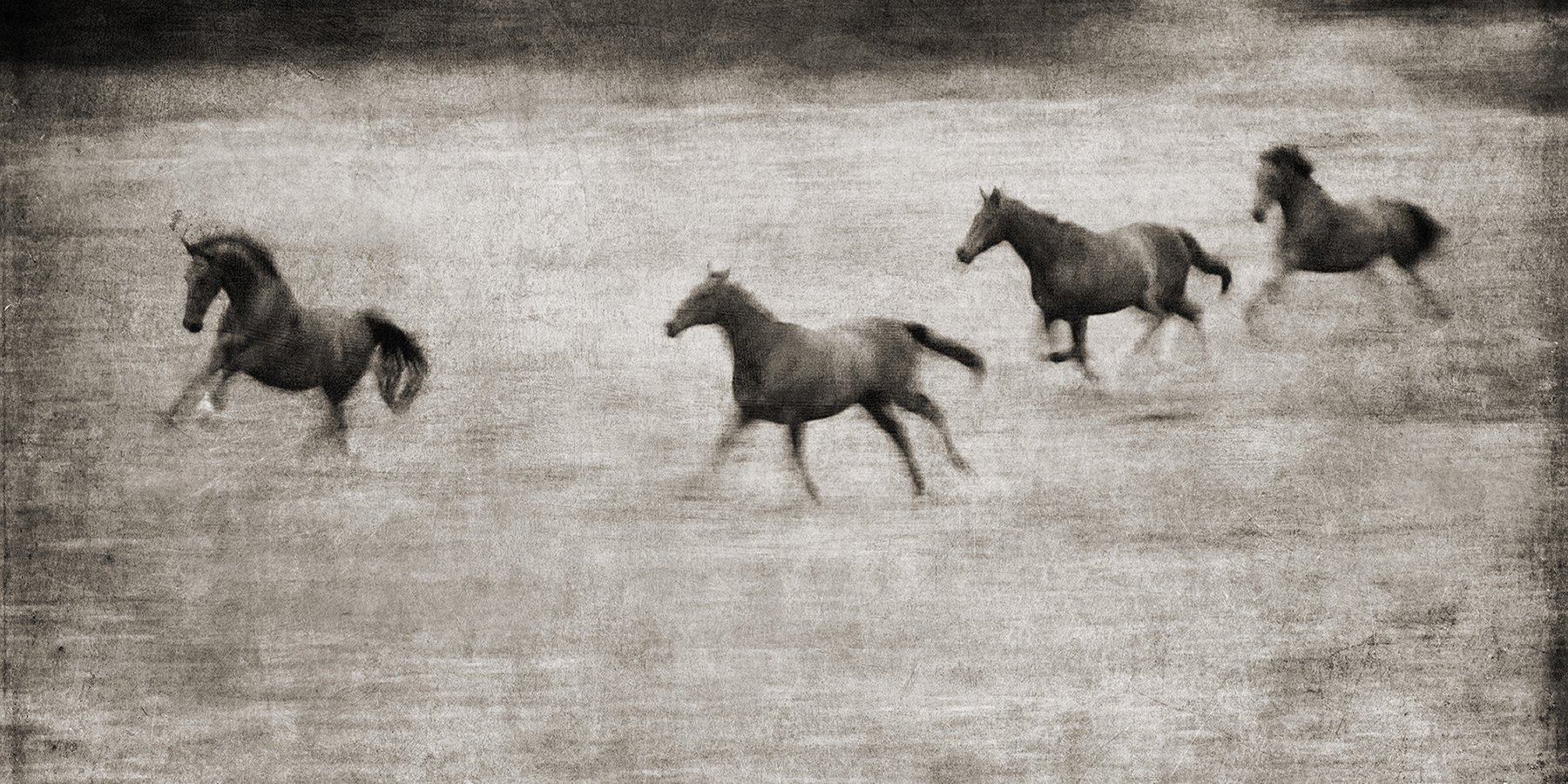 The Enduring Appeal And Extraordinary Breadth Of Equine Art 1stdibs Introspective