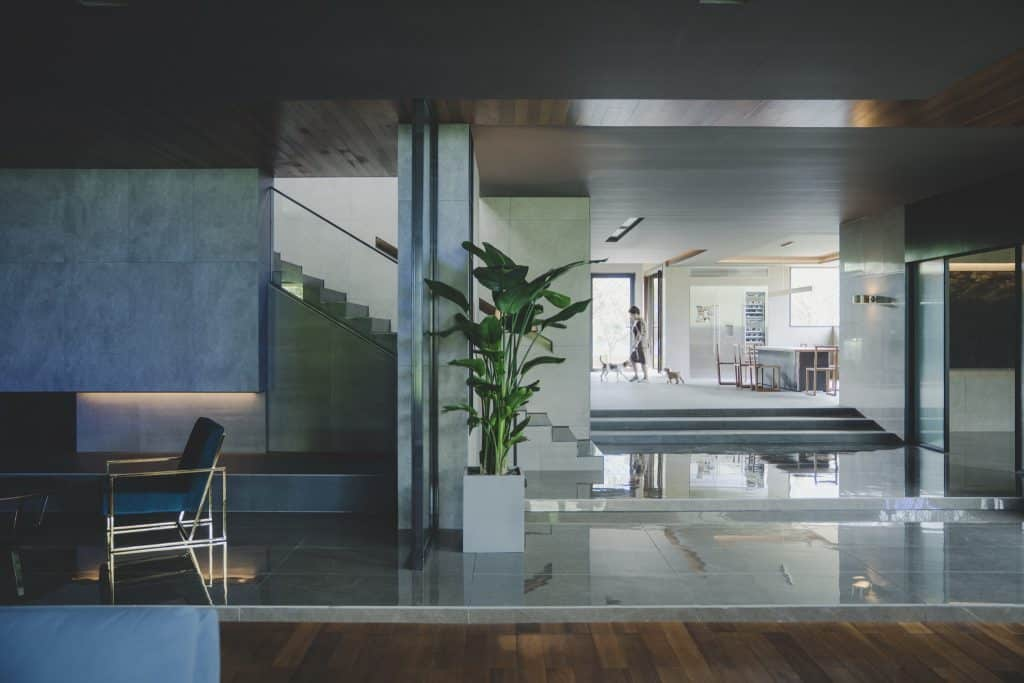 The setting for the film Parasite is an ultra-contemporary glass and concrete house