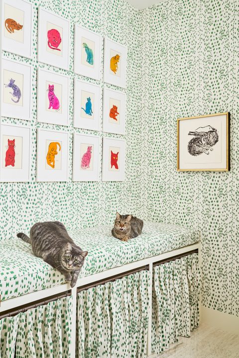 Texas interior design Melissa Morgan M Interiors San Antonio condo cat room