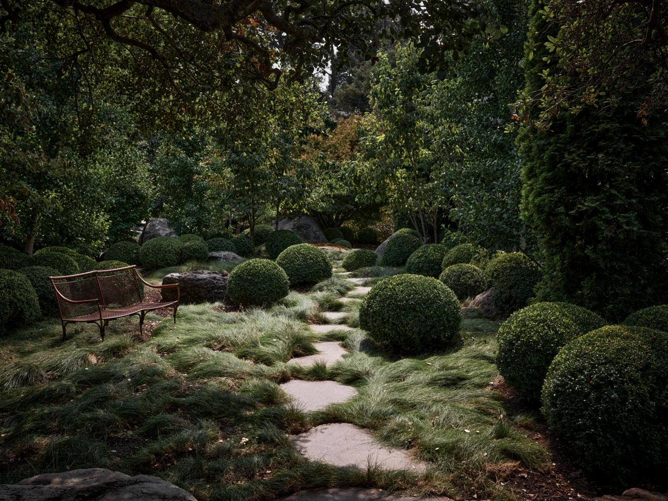 Ray Azoulay front garden
