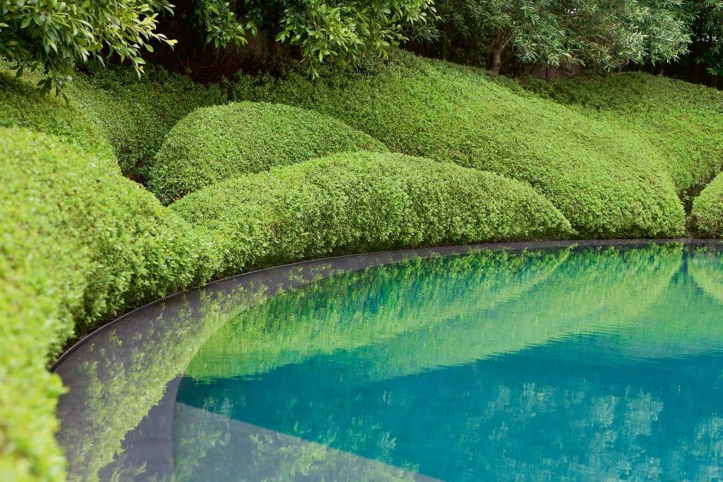 Escallonia shrubs border a crescent-shaped basalt pool in garden designed by Fernando Caruncho in Auckland, New Zealand