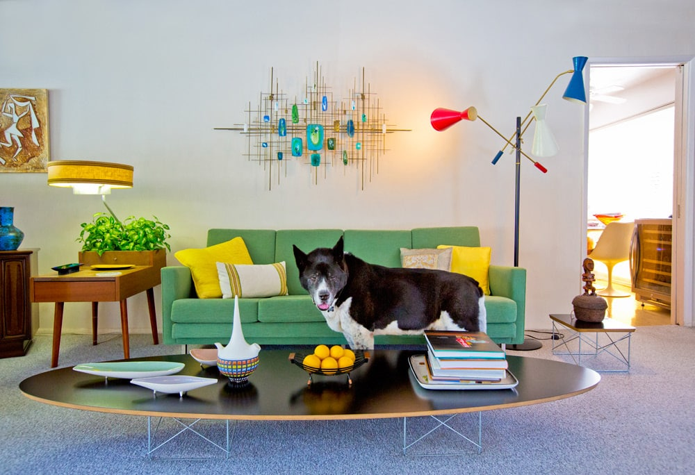Palm Springs: Modern Dogs at Home Nancy Baron Schiffer Publishing Sam Pascal house living room American Akita