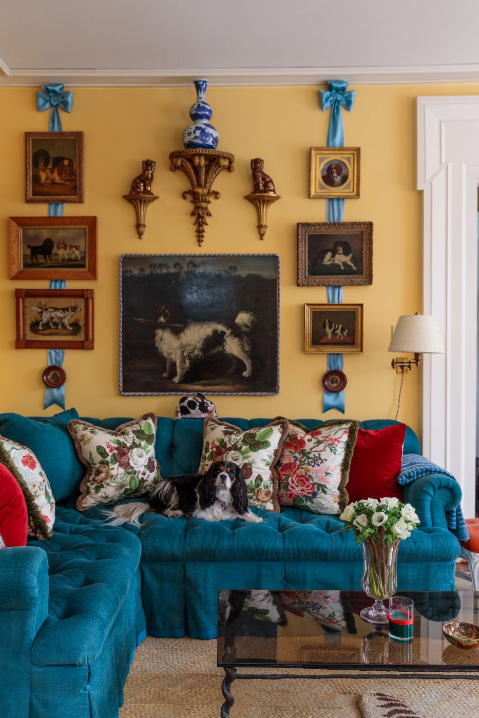 Christopher Spitzmiller's Cavalier King Charles spaniel, Fanny, rest on the sofa before a wall of spaniel portraits that belonged to the late Mario Buatta